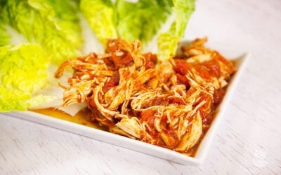 Paleo Shredded Chicken aus dem Slow Cooker
