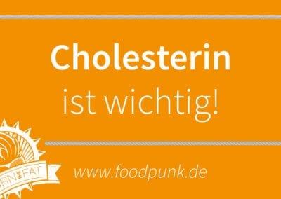 Der tägliche Happen Wissen – Cholesterin als Basis