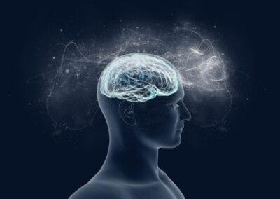 Können mittelkettige Fettsäuren die Blut-Hirn-Schranke passieren?
