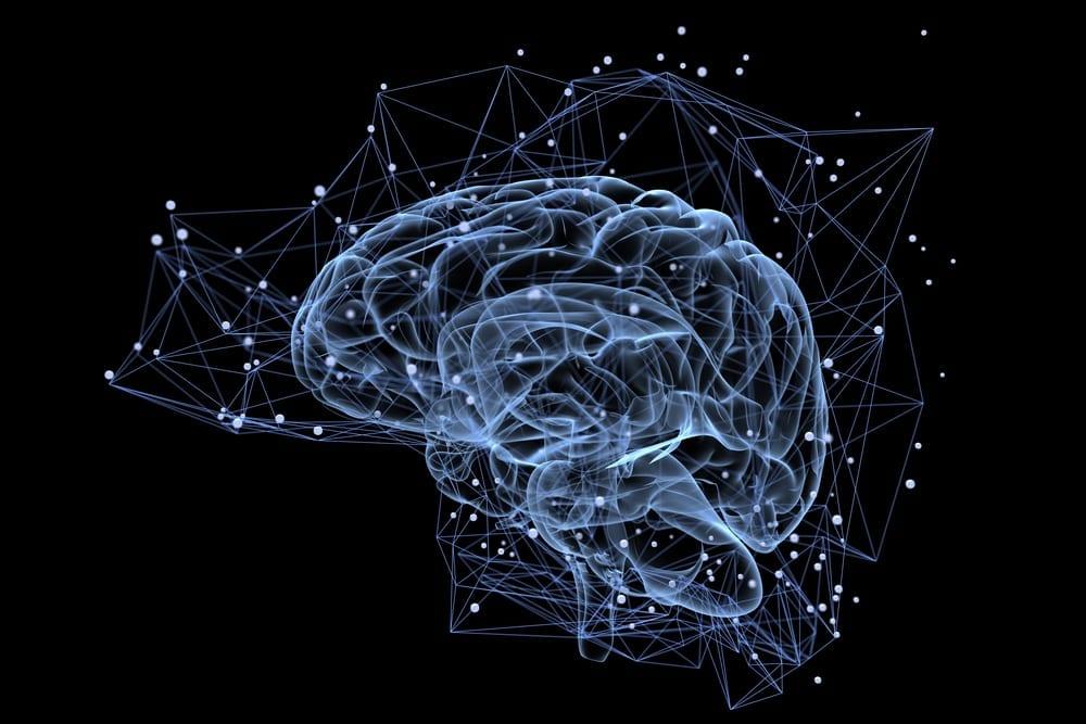 Ketogene Ernährung und Gehirn